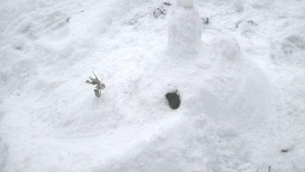 Schneemoschee